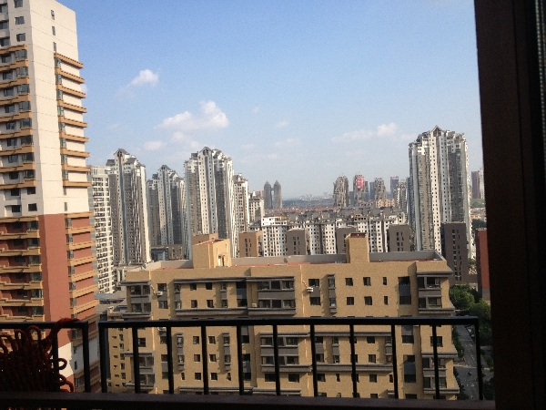 Blick aus unserer neuen Wohnung nach Süden